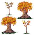 set fantasy deciduous trees in fall vector image