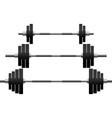 set of weights vector image vector image