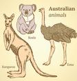 Sketch Australian animals in vintage style vector image vector image
