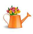 Watering can with bunch of tulips