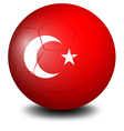 A soccer ball from Turkey vector image vector image