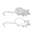 cartoon rat doodle vector image