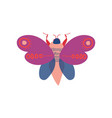cute colorful moth insect top view vector image vector image