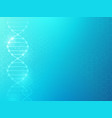 dna background medical texture with molecular vector image vector image