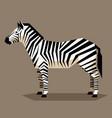 flat geometric zebra vector image vector image