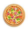 fresh pizza with tomato vector image vector image