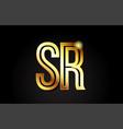 gold alphabet letter sr s r logo combination icon vector image vector image
