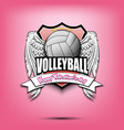 happy valentine day and volleyball vector image