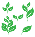set green leaves design elements vector image