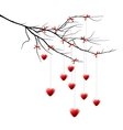 Valentine background branch with hearts vector image