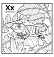 coloring book colorless alphabet letter x vector image vector image