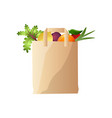 eco paper bag with vegetables and fruits radish vector image