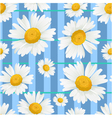 Floral seamless background with white chamomiles vector image