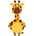 giraffe with sill face vector image vector image