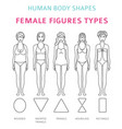 human body shapes female figures types set simple vector image