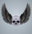 Metal chrome skull with two wings vector image vector image