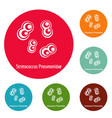 stretococcus pneumonidae icons circle set vector image vector image