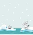 white fox north pole arctic in ocean vector image