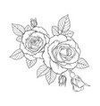 beautiful black and white bouquet rose and leaves vector image vector image