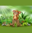 cartoon baby brown bear sitting on tree stump with vector image