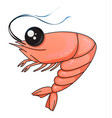 cartoon shrimp on a white background vector image