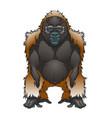 gorilla-01 vector image