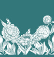 ink hand drawn of ornate peonies vector image