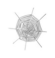 spiderweb or cobweb spider web for halloween vector image