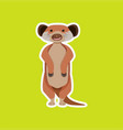a meerkat character sticker vector image vector image