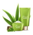 aloe vera skin care cosmetics vector image
