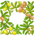 argan branches frame on white background vector image vector image