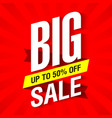 Big Sale banner design template vector image vector image
