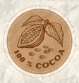cocoa vintage paper vector image vector image