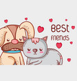 dog and cat cute doodles cartoons vector image