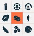 food icons set with mandarin kiwano brussels vector image