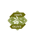 olive best quality isolated icon vector image