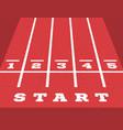perspective start on go-kart running track vector image