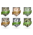 Shields with flag Camouflage vector image vector image