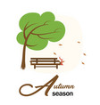 autumn season garden wood chair and tree with fall vector image vector image