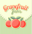 grapefruit jam label in retro style on striped vector image vector image