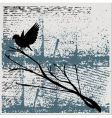 grunge bird background vector image vector image