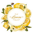 Lemon round banner vector image vector image