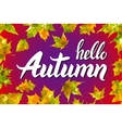 nature leaf Hello Autumn Watercolor orange vector image vector image