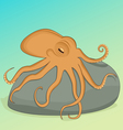 Octopus on the rock vector image