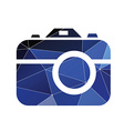 photo camera icon Abstract Triangle vector image vector image