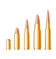 Set of gun bullets vector image vector image