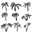 set of palm tree icons isolated on white vector image