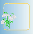 Snowdrops spring flower frame blue background vector image