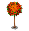 autumn tree and butterflies as leaves vector image vector image