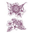 hand drawn of flowers and leaves vector image